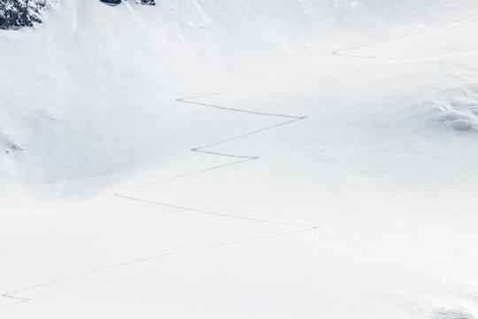 ski touring tracks in the fresh powder snow