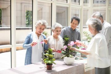 Senior friends planting flowers in nursing home