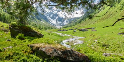 Fototapete - Panorama einer Berglandschaft mit Gletscher und Gebirgsbach