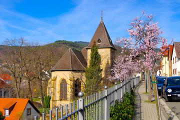 die Nikolauskapelle in Gimmeldingen während der Mandelblüte - the Nikolauskapelle in Gimmeldingen during the almond blossom