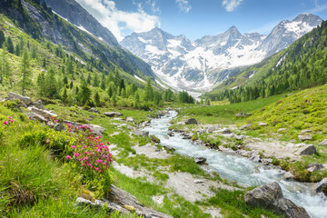Fototapete - Fantastische Naturlandschaft mit Gebirgsbach und Gletscher in den österreichischen Alpen