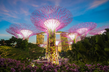 Wall Mural - Singapore travel concept, landmark and popular for tourist attractions