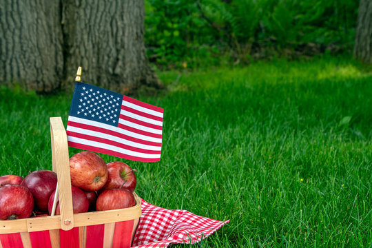 Basket of red apples and american flag on red and white checkered tablecloth on grass