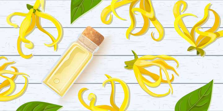 Ylang Ylang flower. Cananga odorata essential oil in glass scent bottle with cork on white wooden shabby desk. Beautiful tropical