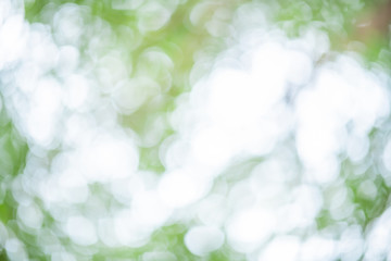 Natural bokeh abstract pattern background.