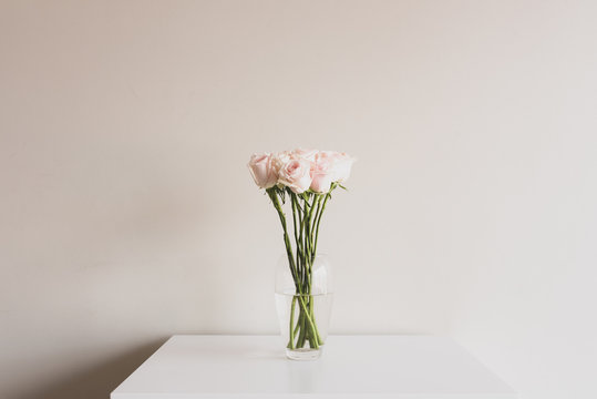 Long stemmed pale pink roses in glass vase on white table against neutral wall background - matte filter effect