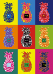 eps Vector image:Pineapple Crazy Color