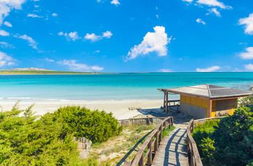 landscape of La Pelosa beach in a sunny day