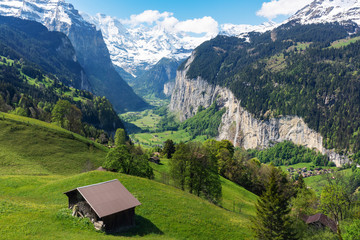 Countryside, green grassland, pine forest, a house and Alps mountain range in summer at...