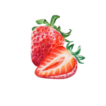 Watercolor red juicy strawberry with half berry. Food background, painted bright composition. Hand drawn food illustration. Fruit print. Summer sweet fruits and berries.
