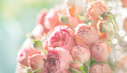 Fotoväggar - Roses. Bouquet of pink rose flowers in sun light. Holiday background