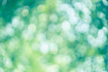 abstract blur green color for background, blurred and defocused effect spring concept for design