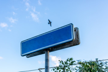 blank Blue street sign Insert with a bird In the sky.