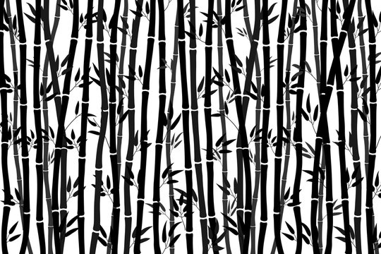 Abstract background - bamboo forest. Black drawing of bamboo stalks on a white background. Vector illustration