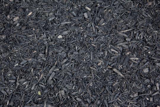 grey much or dirt