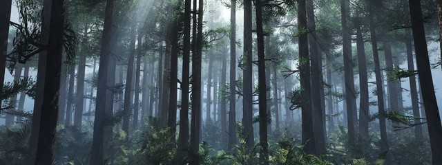 Trees in the fog. The smoke in the forest in the morning. A misty morning among the trees. 3D rendering Fototapete