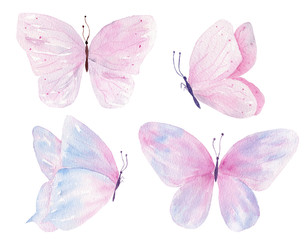 Butterflies hand drawn watercolor raster illustrations set