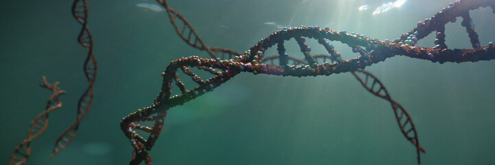 DNA molecule, double helix carrying genetic instructions (3d science rendering banner)