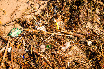 marine pollution on a beach of the Baltic sea in Poland