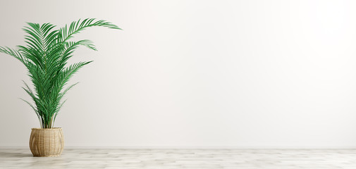 Interior background of room with white wall and palm 3d rendering