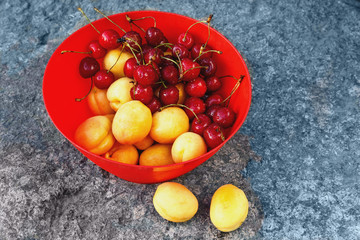 ripe yellow apricots and fresh red sweet cherries in a plastic bowl on a large stone in the rays of the setting sun