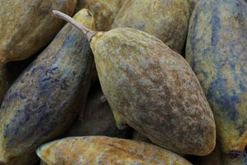 Keuken foto achterwand Baobab fresh baobab fruit