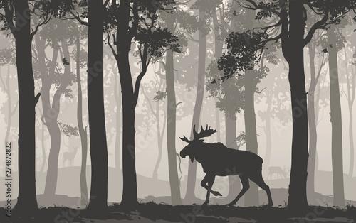 Wall mural moose