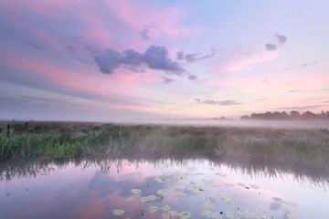 Wall Mural - serene misty sunrise on pond