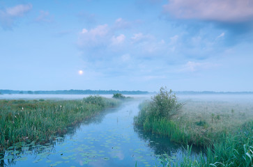 Wall Mural - misty tranquil dusk with full moon over river