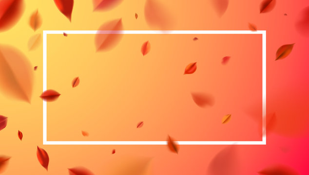 Fall background with blurred flying red leaves and white frame, autumn nature vector design