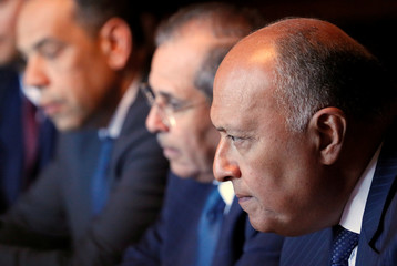 Egyptian Foreign Minister Sameh Shoukry meets with his Russian counterpart Sergei Lavrov in Moscow