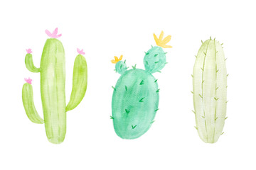 Watercolor painting, set of cactus in watercolor style on white background, art and design