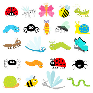 Insect icon set. Lady bug Mosquito Butterfly Bee Grasshopper Beetle Caterpillar Spider Cockroach Fly Snail Dragonfly Ant Lady bird Worm. Cute cartoon kawaii funny doodle character. Flat design.