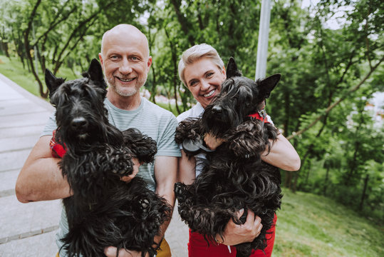 Smiling adult couple holding two black dogs in park