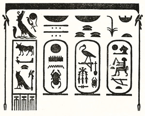 Simple black and white outline style illustration of egyptians hieroglyphs reporting Thutmose III name and surnames (Karnak). Pub. on Magasin Pittoresque Paris 1848