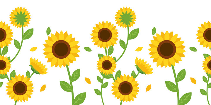 The Seamless pattern of sunflower and leaf on background. The seamless pattern sunflower. Seamless pattern leaf. shape of leaf.sunflower on white background. sunflower in flat vector style.