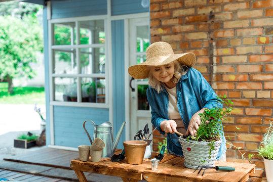 cheerful senior woman in straw hat holding shovel near plant