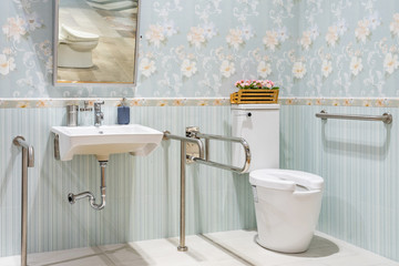 Interior of bathroom for the disabled or elderly people. Handrail for disabled and elderly people in the bathroom Wall mural