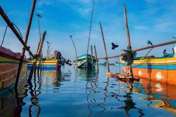 Fishing Boats, Jaffna, Sri Lanka Wall mural