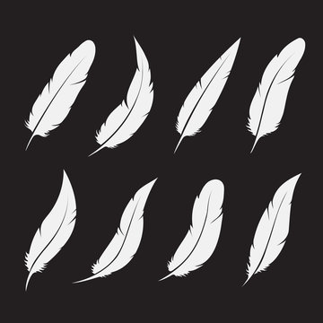Vector group of white feather on white background. Easy editable layered vector illustration.