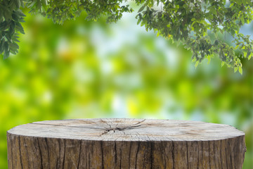 Wooden desk or stump in green forest background,For product display.