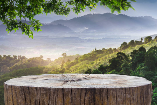 Wooden desk or stump in green forest background,For product display. Beautiful mountain at sunrise.