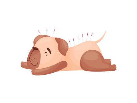 Cartoon cute dog on acupuncture. Vector illustration on white background.
