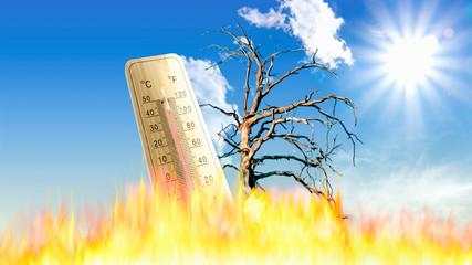Hitze und Trockenheit Waldbrandgefahr.