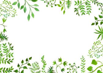 bella cornice su sfondo bianco botanica Wall mural