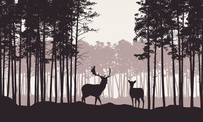 Realistic illustration of landscape with coniferous forest and morning retro sky. Deer and doe with antlers standing. Suitable as advertising for hunting or nature, vector Wall mural