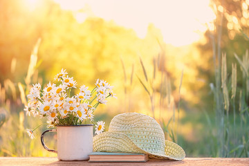 beautiful daisies in white cup, book, braided hat in summer garden. Rural landscape natural background with Chamomile flowers in sunlight. Summer time. copy space