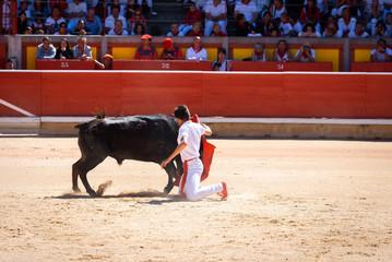 Young bullfighter in Pamplona bullring, Spain