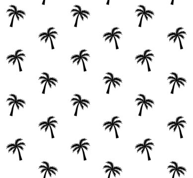Vector seamless pattern of black hand drawn doodle sketch palm tree silhouette isolated on white background