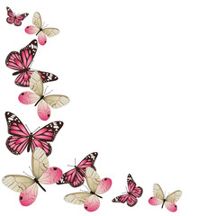 Frame of pink butterflies in flight. Isolated on white background. Vector graphics.